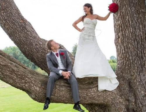 Alex's Wedding Dress